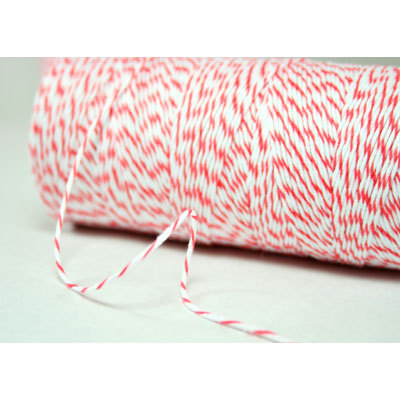 Bakers Twine Coral 10 m